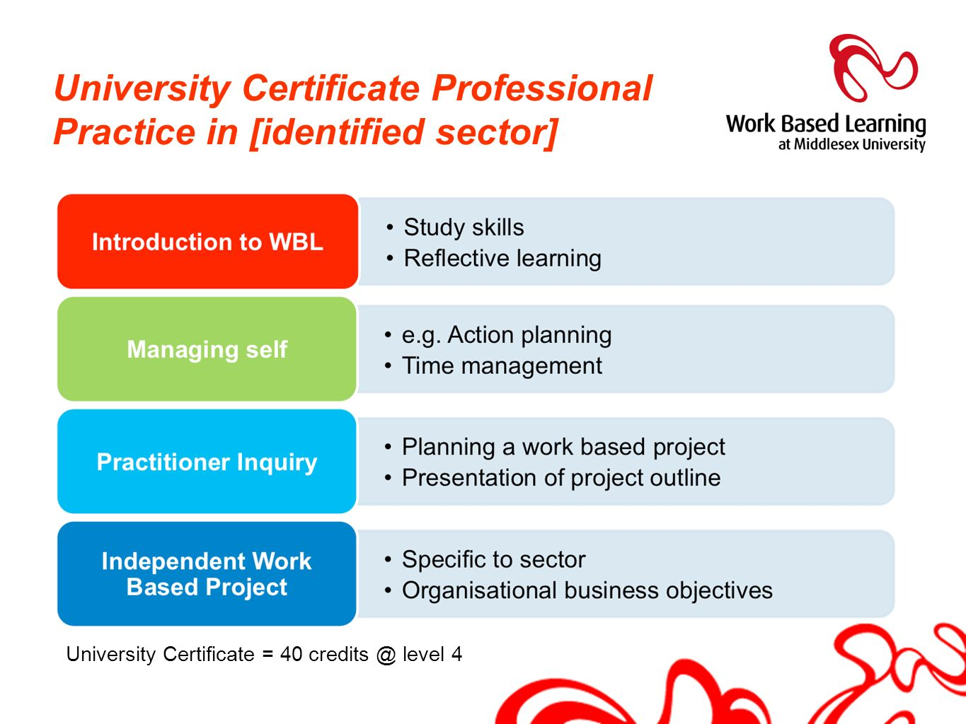 University Certificate Professional Practice in [identified sector]