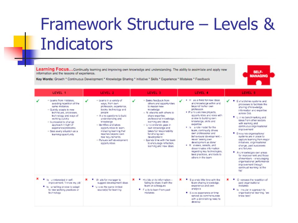 Framework Structure – Levels & Indicators