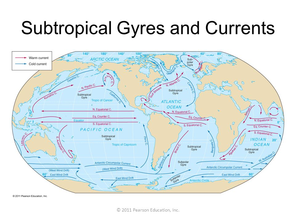 Subtropical Gyres and Currents