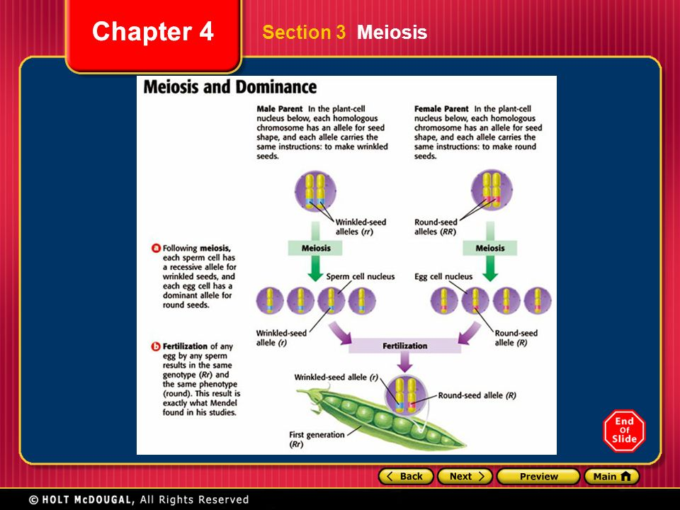 Study guide of foundations of college chemistry