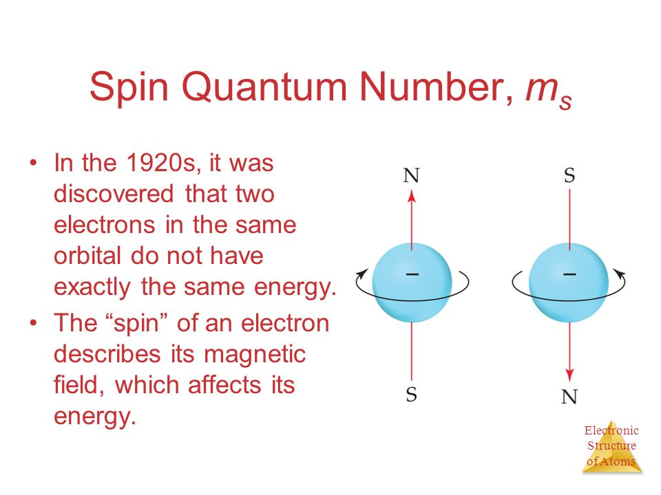 Spin Quantum Number, ms In the 1920s, it was discovered that two electrons in the same orbital do not have exactly the same energy.