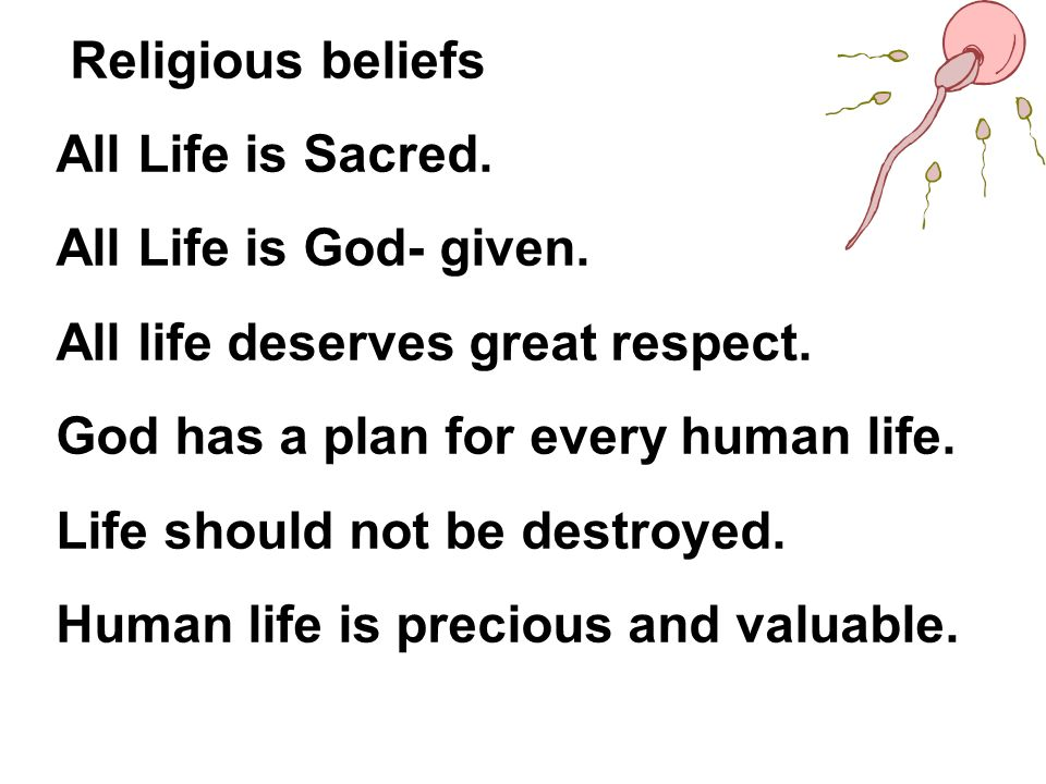 Religious beliefs All Life is Sacred. All Life is God- given. All life deserves great respect. God has a plan for every human life.
