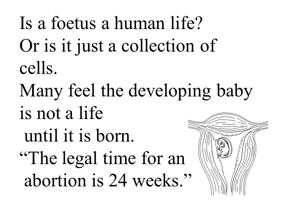 Is a foetus a human life. Or is it just a collection of cells