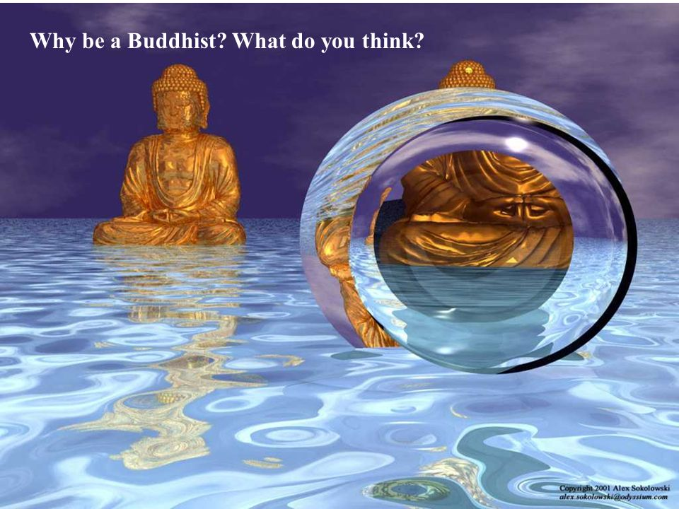 Why be a Buddhist What do you think