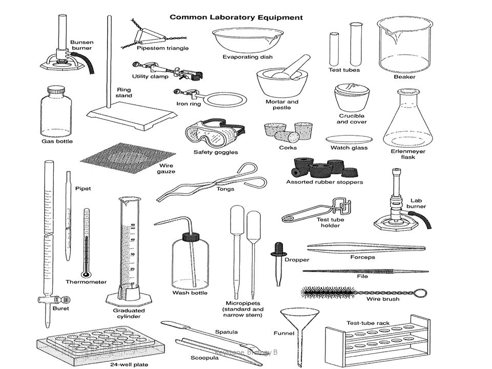 Identifying Laboratory Equipment - ppt video online download