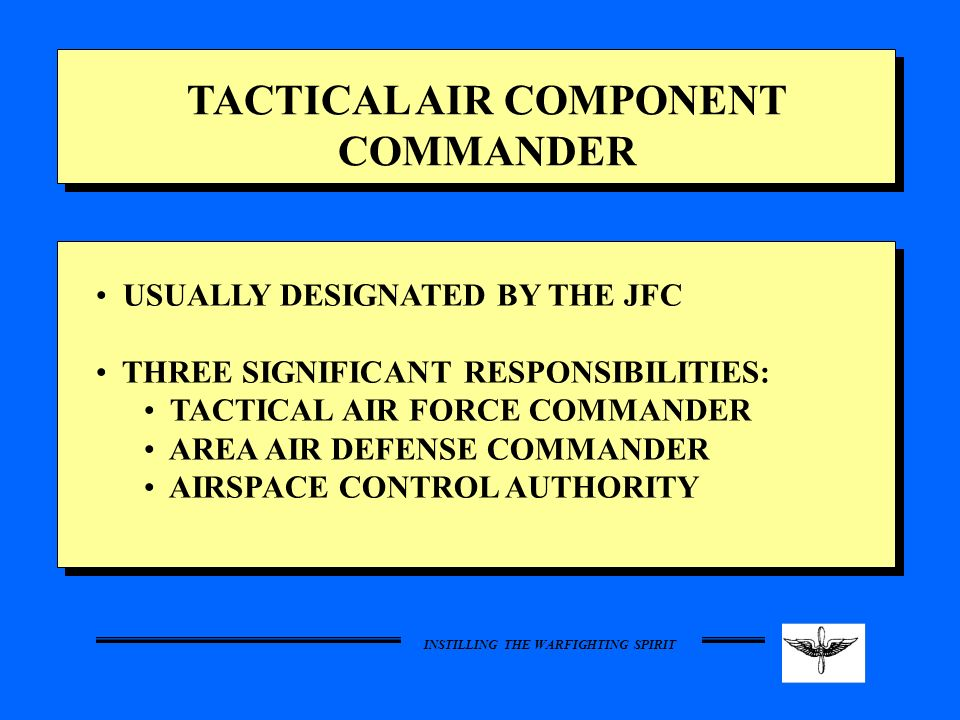 TACTICAL AIR COMPONENT COMMANDER