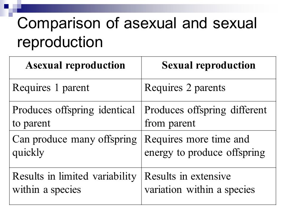 Compare sexual and asexual reproduction pics 25
