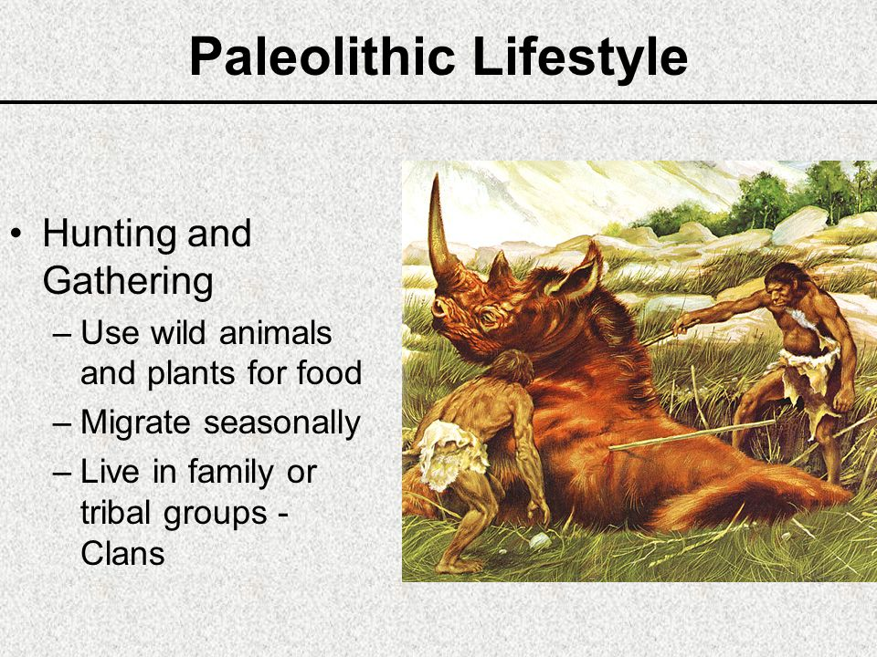 HUMAN PREHISTORY PALEOLITHIC & NEOLITHIC AGES - ppt video ...