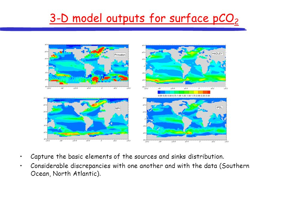 3-D model outputs for surface pCO2