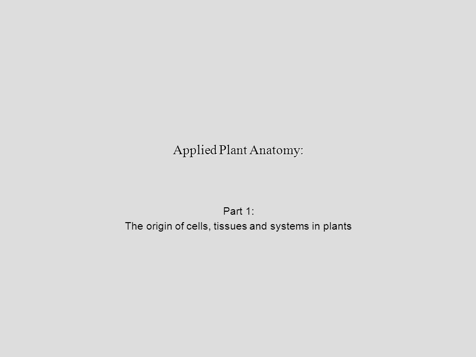 Applied Plant Anatomy: - ppt download