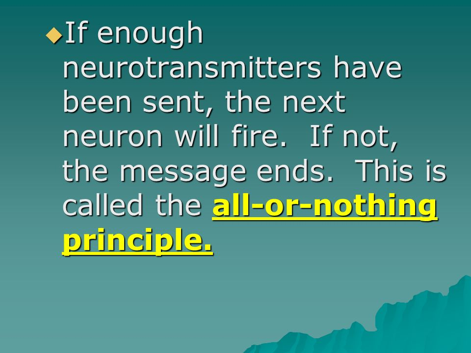 If enough neurotransmitters have been sent, the next neuron will fire