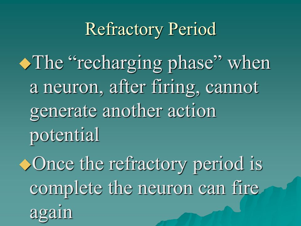 Once the refractory period is complete the neuron can fire again