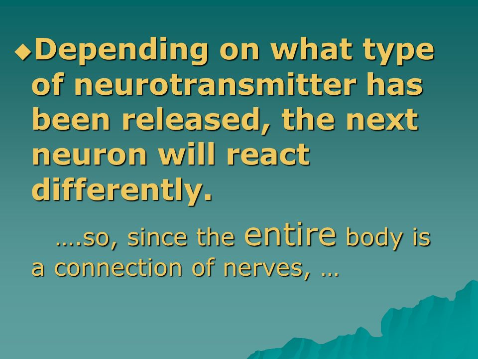 Depending on what type of neurotransmitter has been released, the next neuron will react differently.