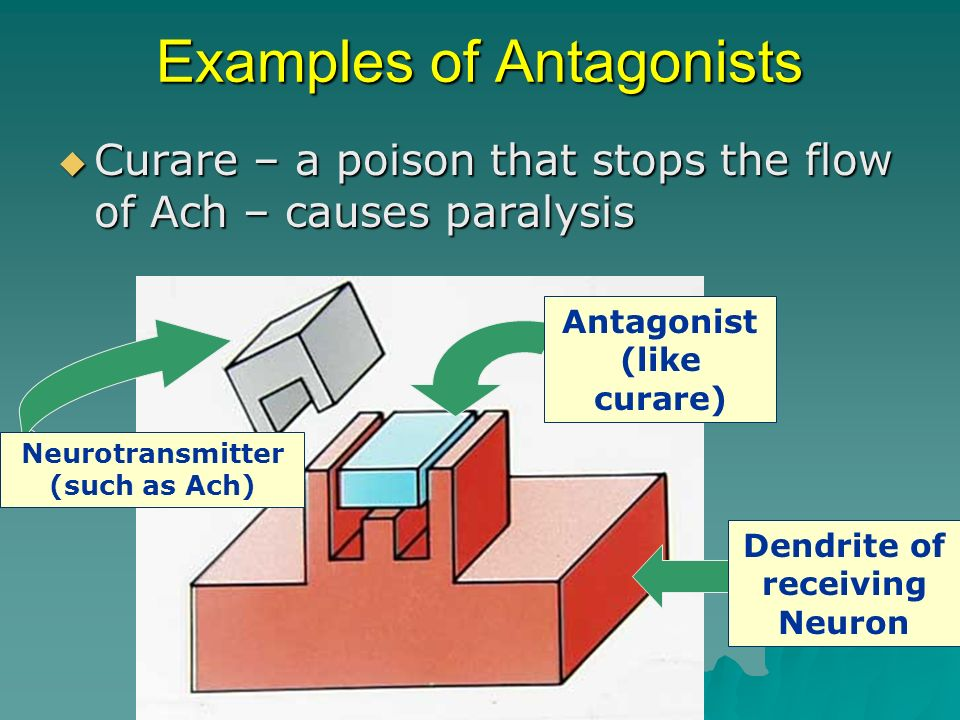 Examples of Antagonists
