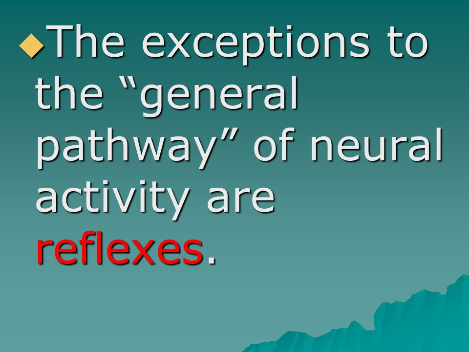 The exceptions to the general pathway of neural activity are reflexes.