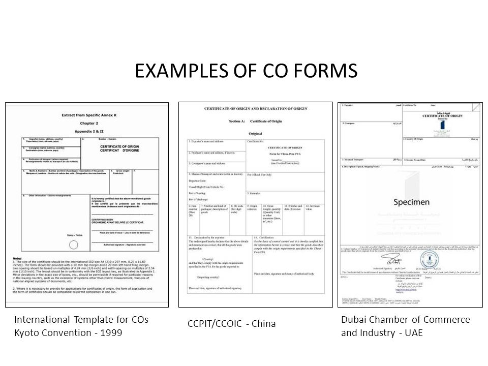 Chapter 4 Cargo Documents Ppt Video Online Download