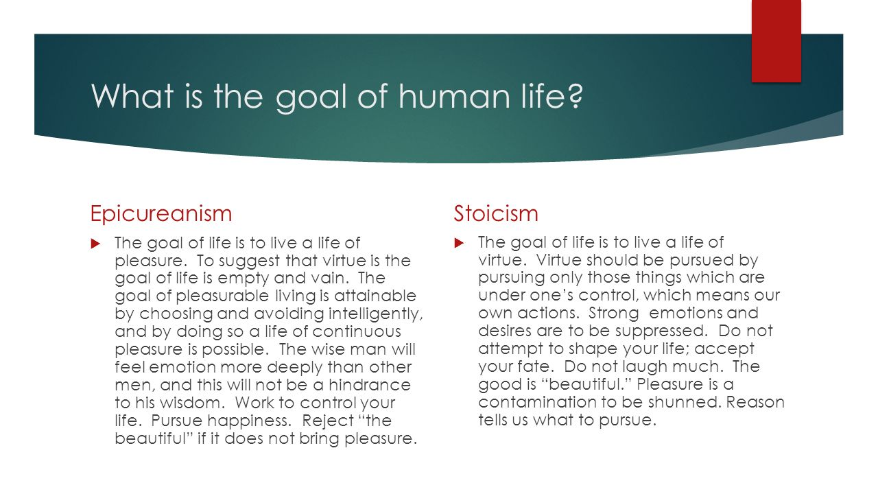goal of human life 4 objectives of human life according to vedic philosophy human life has a definite purpose whilst the final goal of life is moksha, there are three other (intermediary) goals of life.