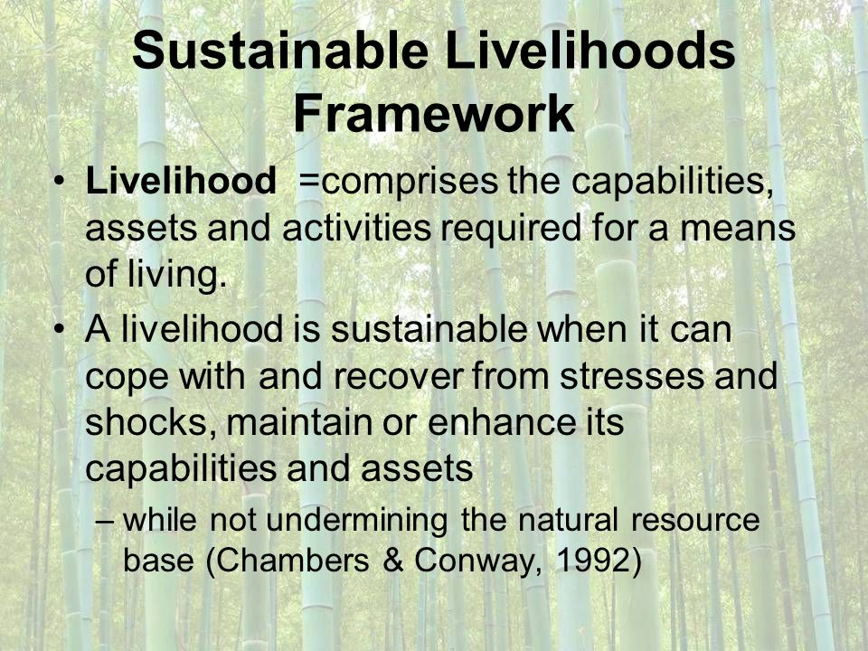 Sustainable Livelihoods Framework