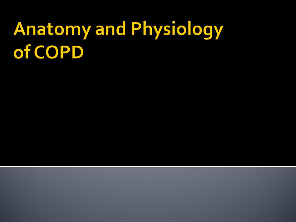 Anatomy and Physiology of COPD