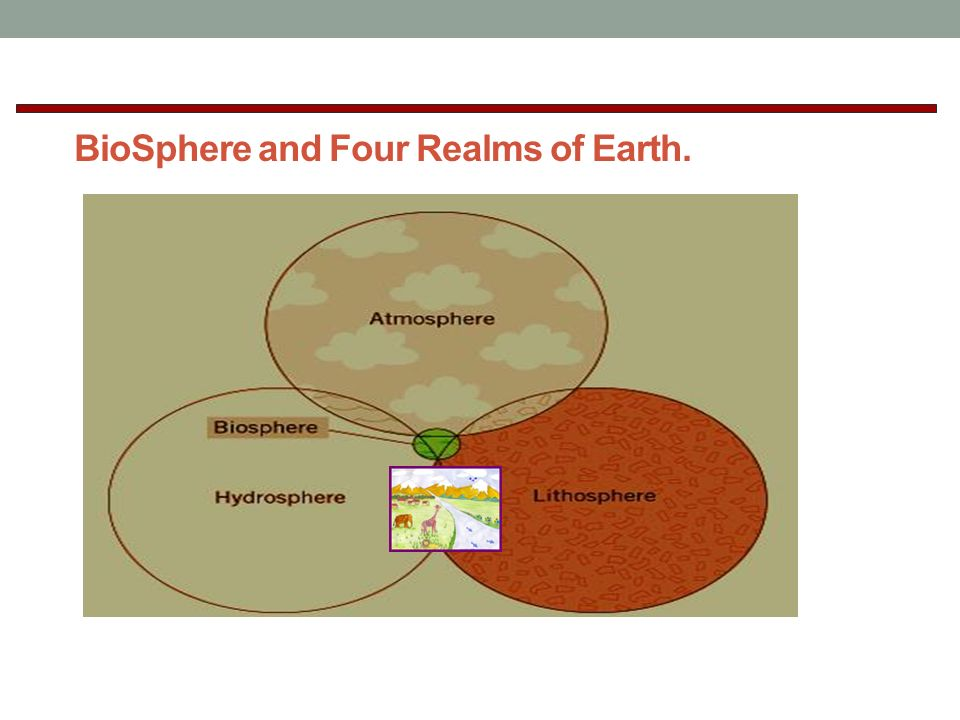 BioSphere and Four Realms of Earth.