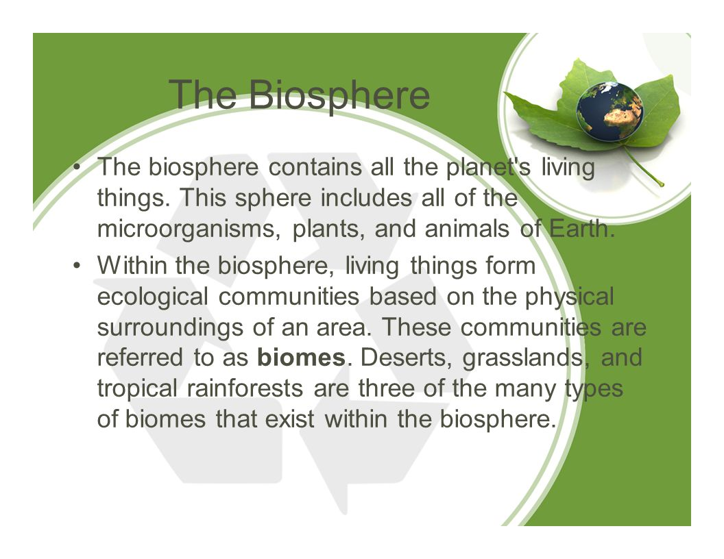 The Biosphere The biosphere contains all the planet s living things. This sphere includes all of the microorganisms, plants, and animals of Earth.