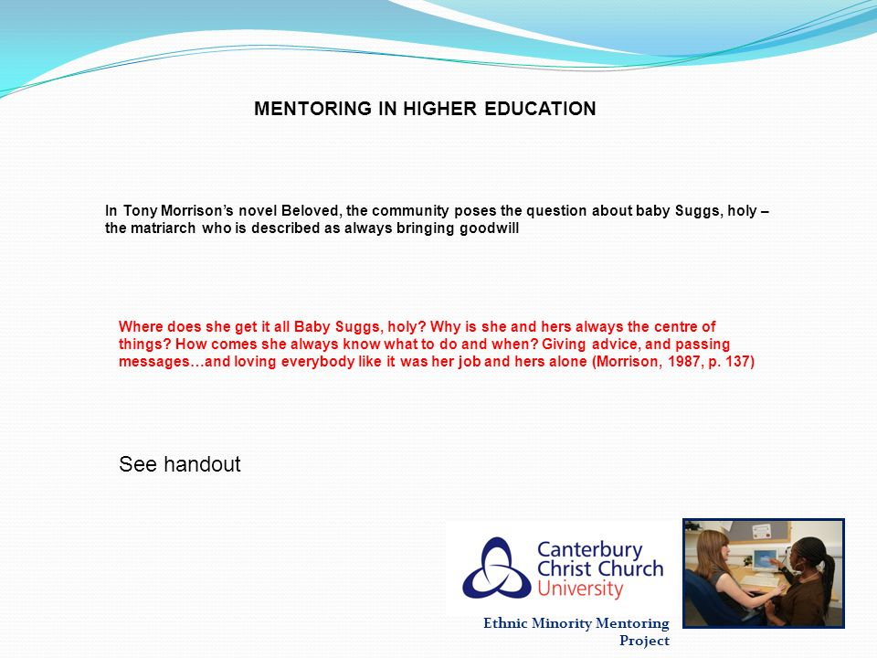 MENTORING IN HIGHER EDUCATION