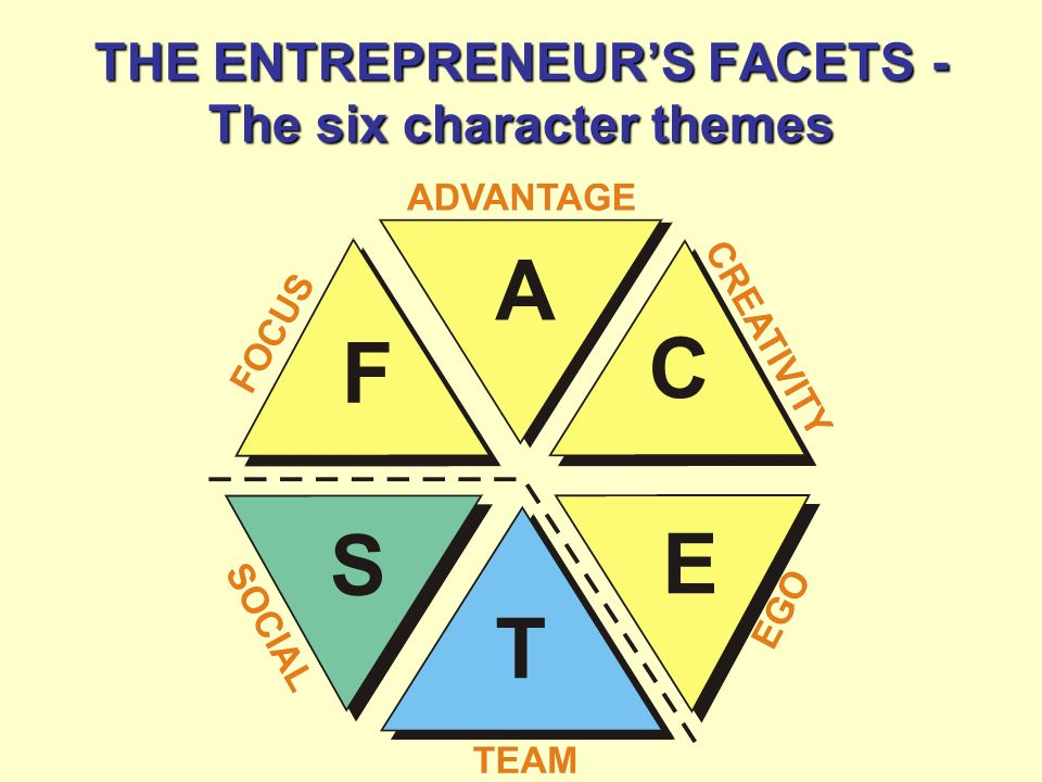 THE ENTREPRENEUR'S FACETS - The six character themes