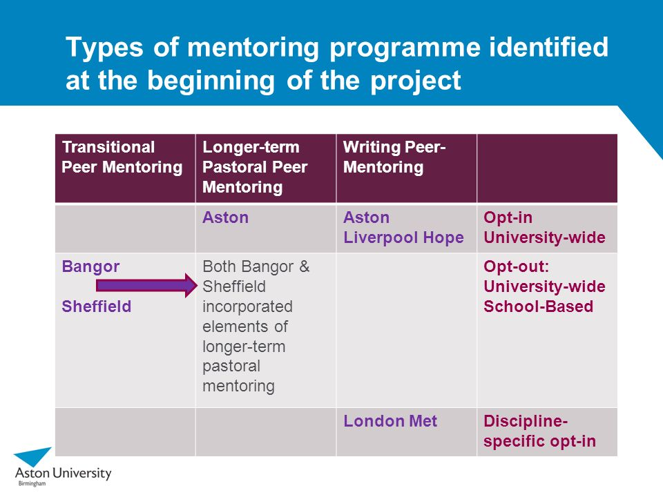 Types of mentoring programme identified at the beginning of the project