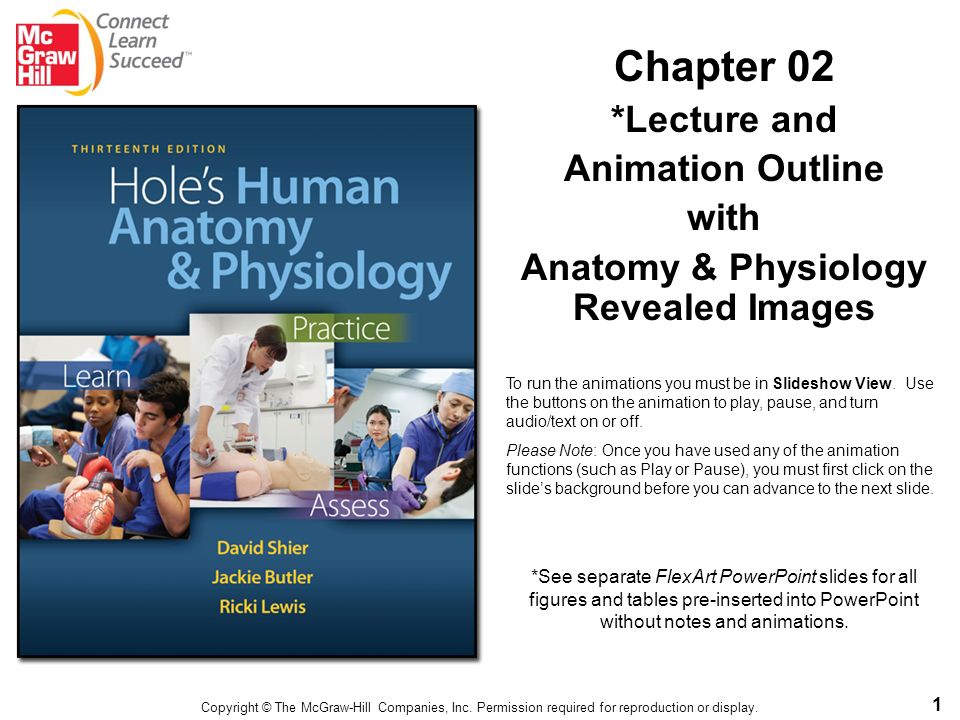 Anatomy & Physiology Revealed Images - ppt download