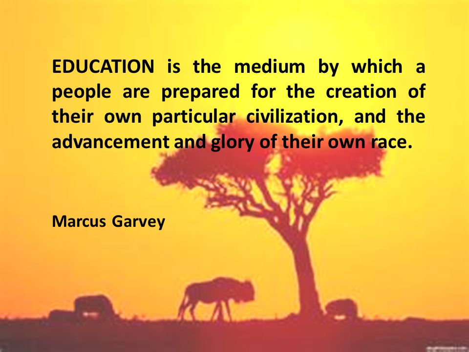 EDUCATION is the medium by which a people are prepared for the creation of their own particular civilization, and the advancement and glory of their own race.