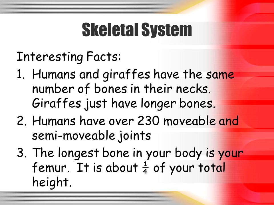 Human Body Systems A Presentation Ppt Video Online Download