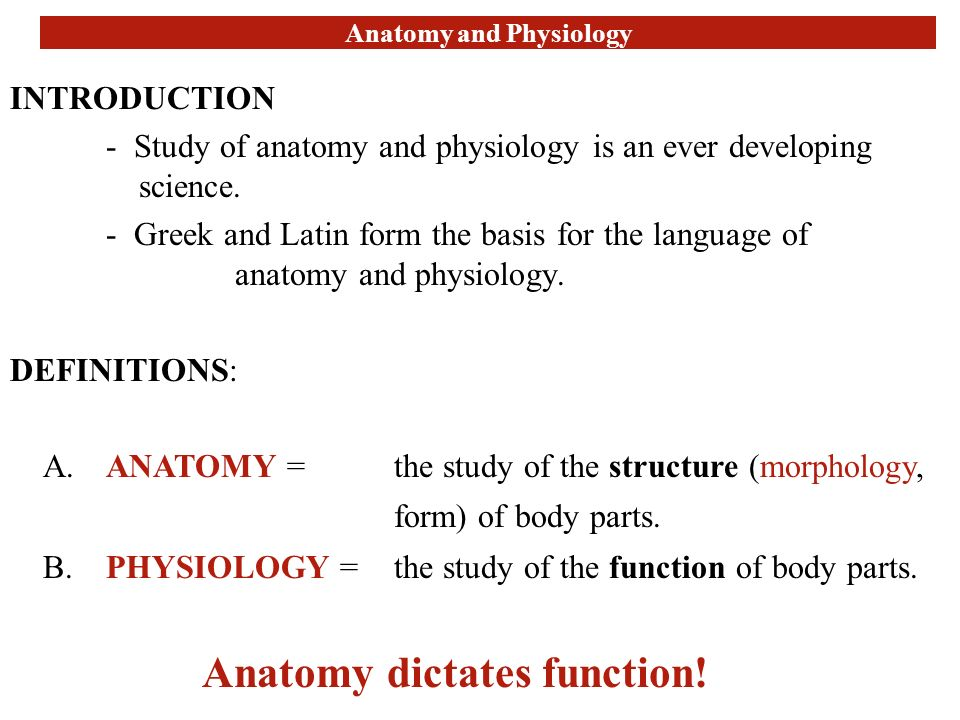 Mcgraw Hill Study Guide Anatomy And Physiology - User Guide Manual ...