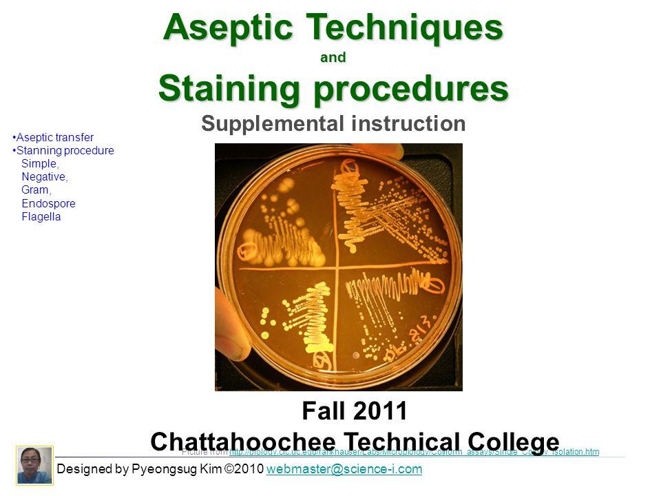 Supplemental Instruction Chattahoochee Technical College Ppt Download