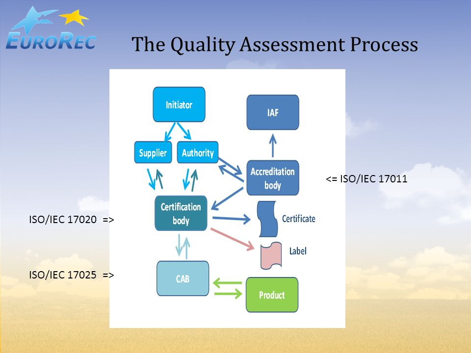 The Quality Assessment Process