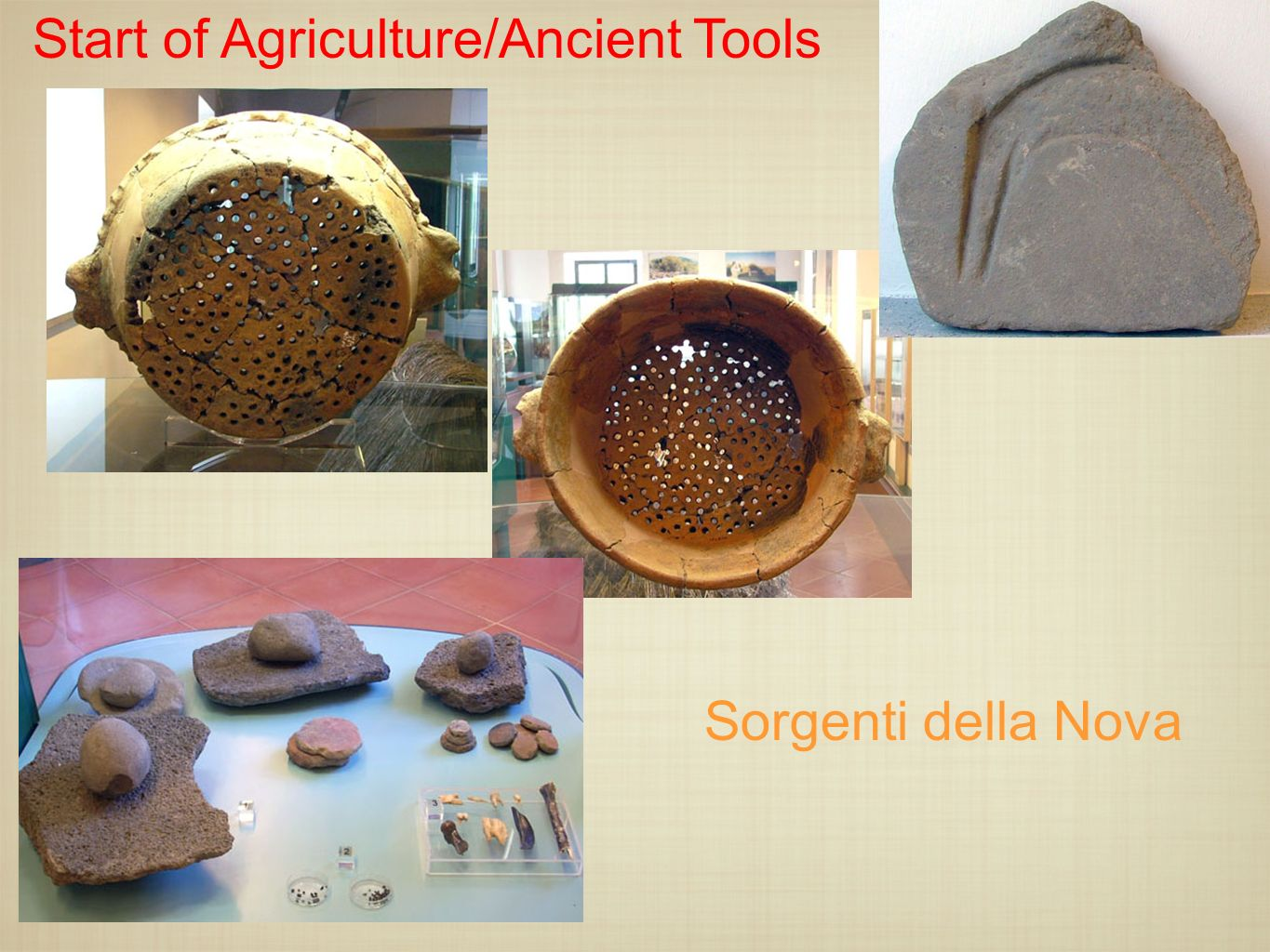 Start of Agriculture/Ancient Tools
