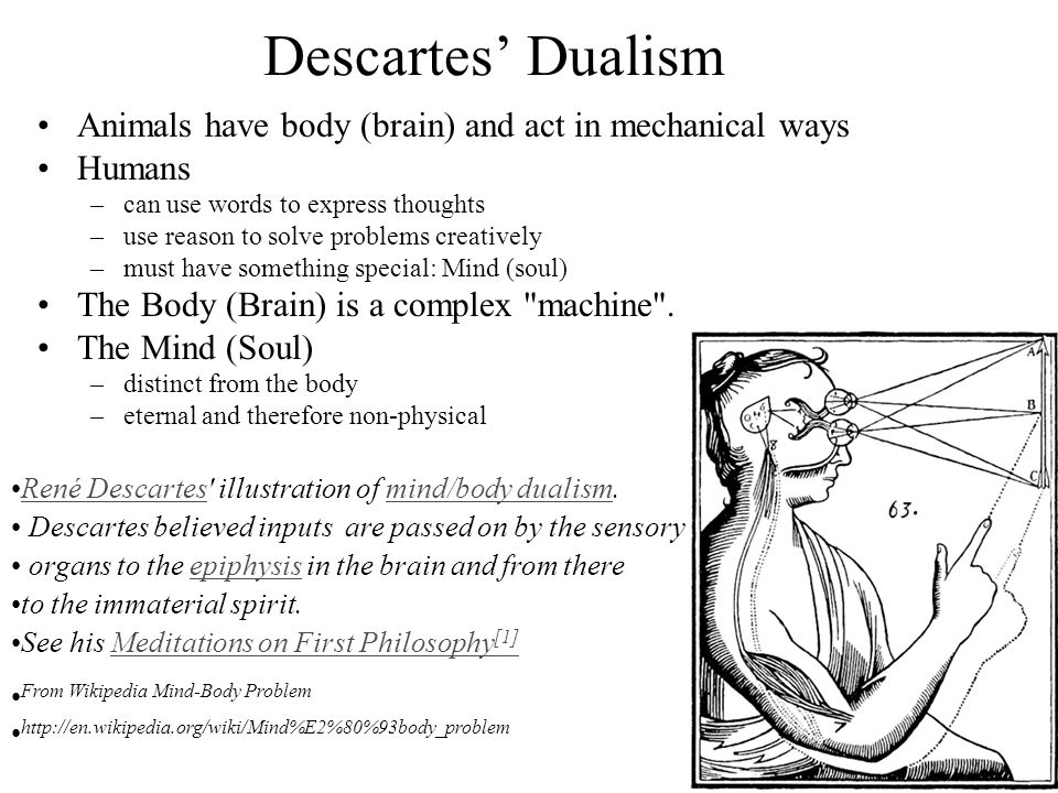 descartes mind and body First, how does descartes know that thought is the essence of mind and extension is the essence of body for this part of the claim he is resting on the suppressed premise we saw in the last section: p is the essence of s if and only if i can conceive of s attributing only p to it.