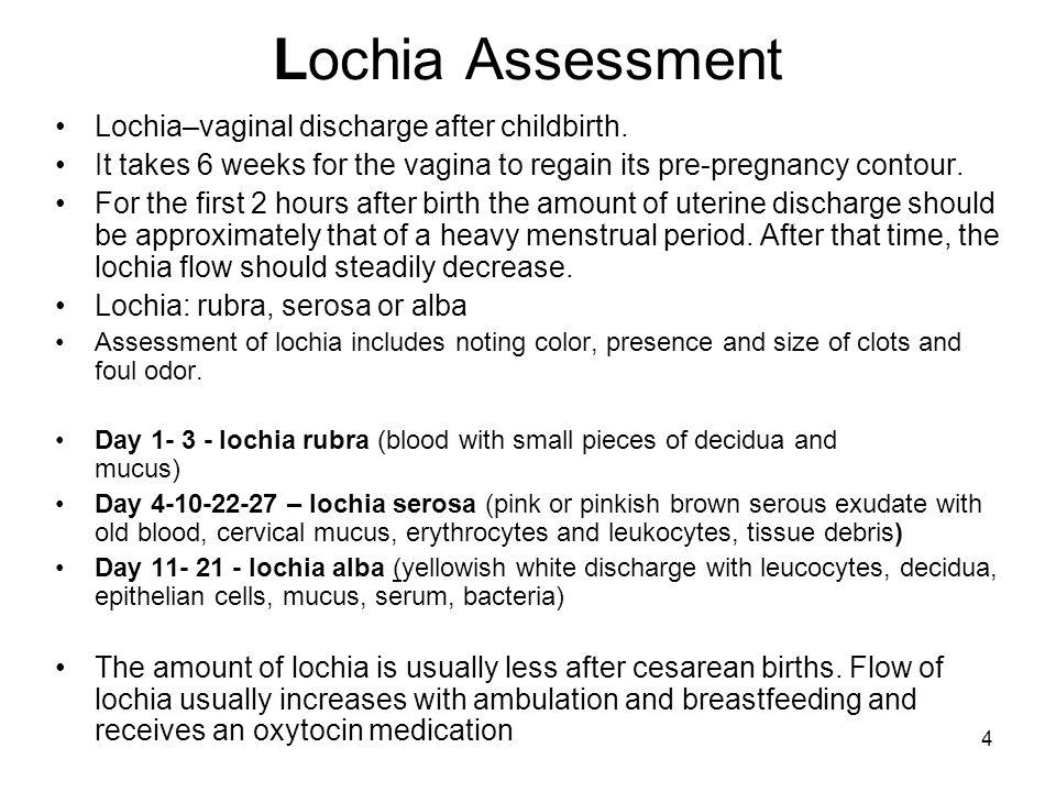 The Postpartum Period Puerperium = fourth trimester of