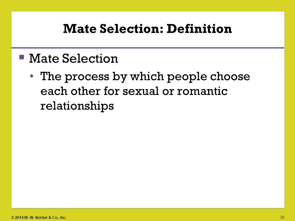 Hookup single life and mate selection