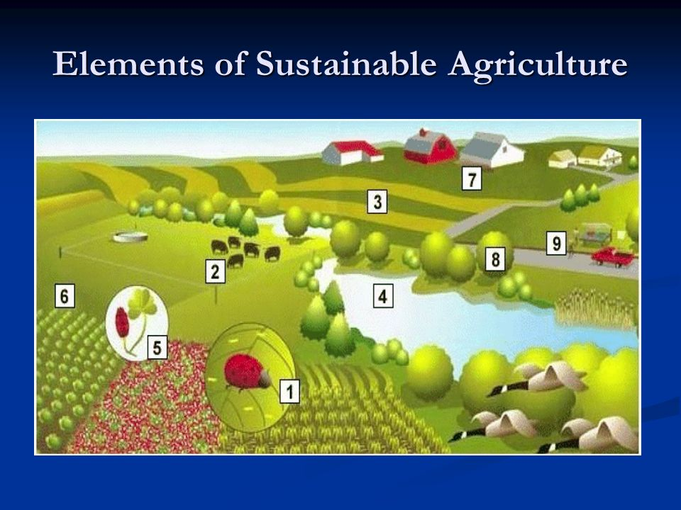 Sustainable agriculture unit 1 sustainable development ppt video sustainable agriculture unit 1 sustainable development toneelgroepblik Gallery