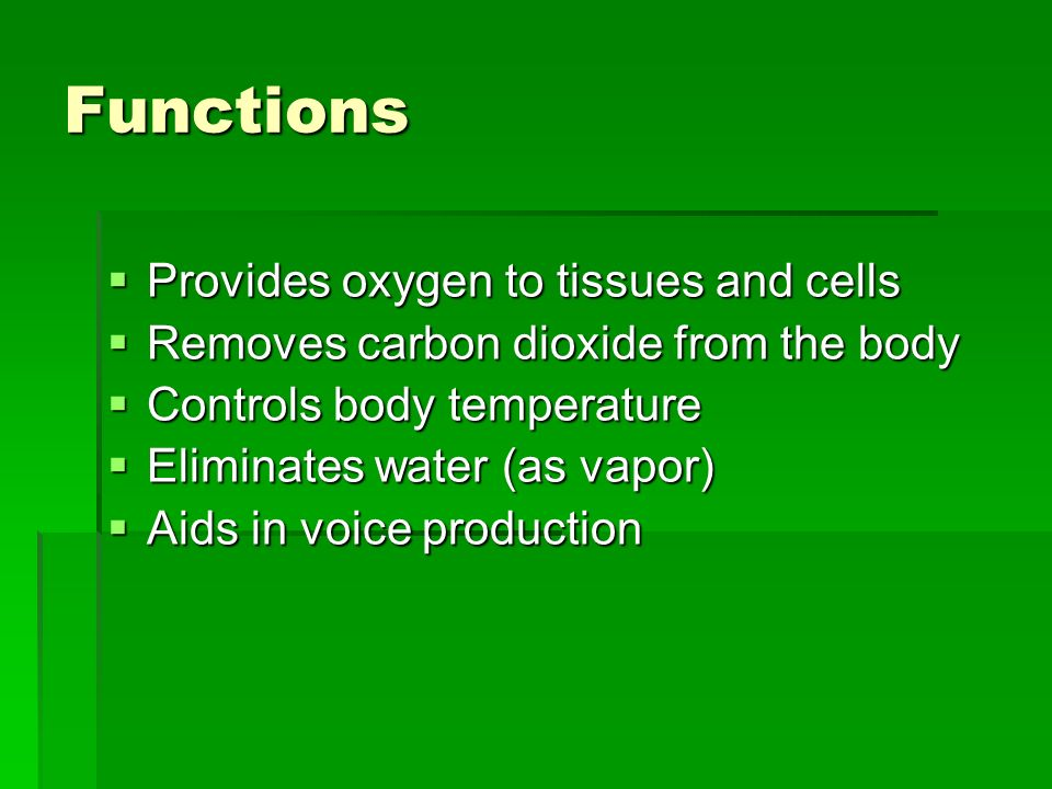 Functions Provides oxygen to tissues and cells