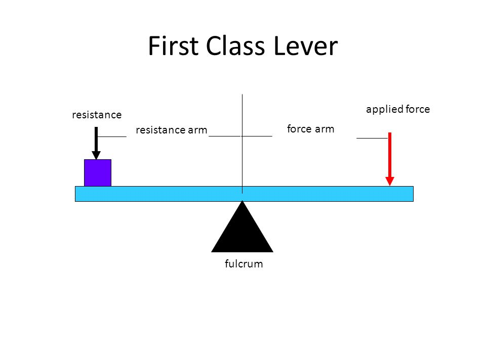 1st Class Lever Diagram With Force Resistant Trusted Wiring Diagram