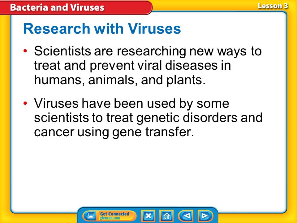 Lesson 7-3 What are Viruses? - ppt video online download