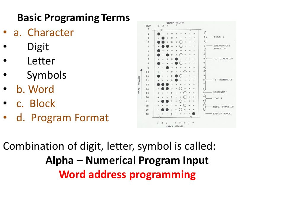 Alpha Numerical Program Input Ppt Download