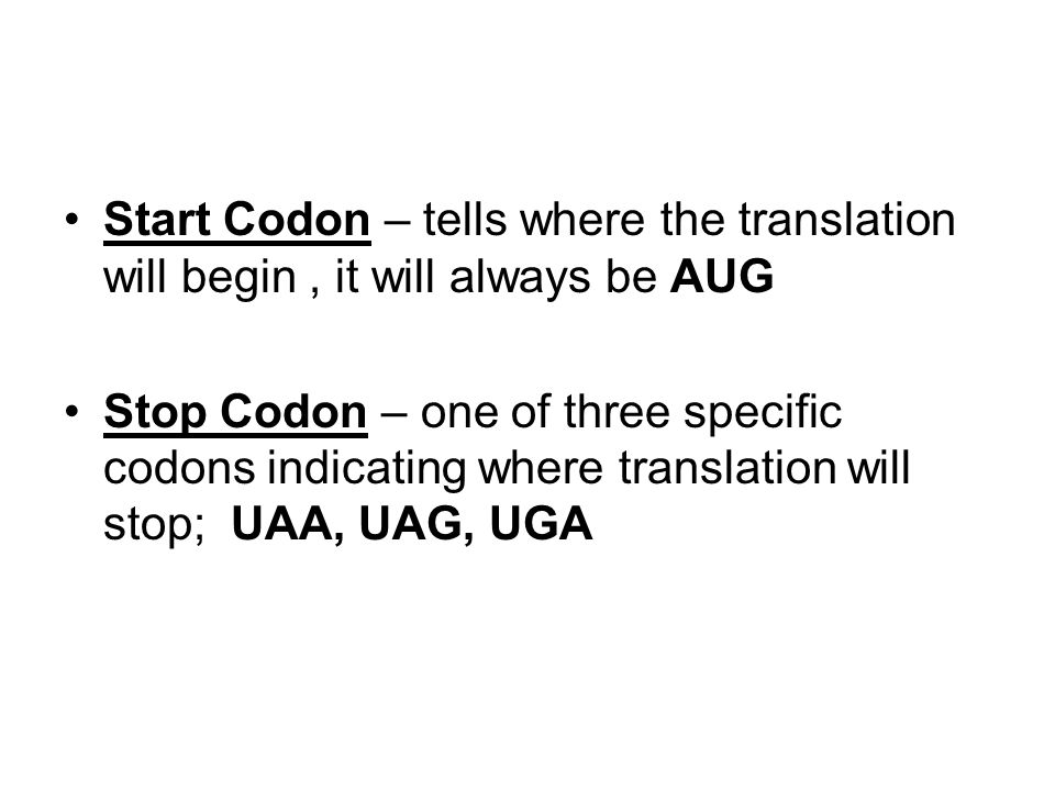 Start Codon – tells where the translation will begin , it will always be AUG