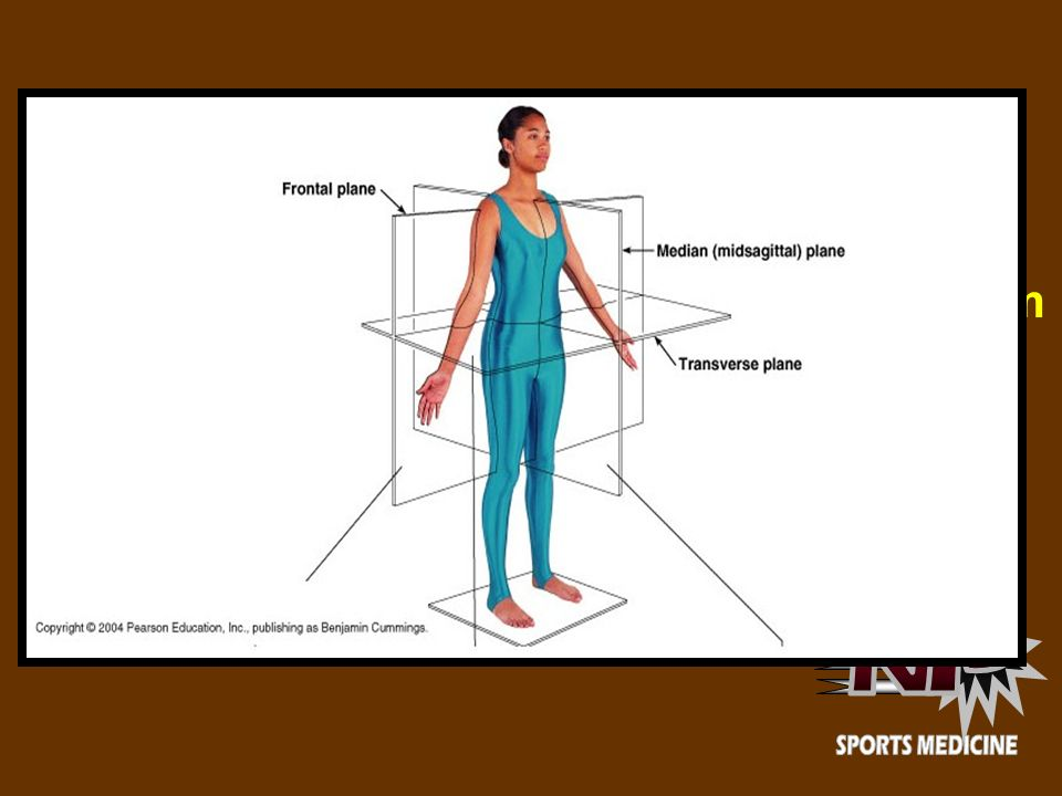 N P SPORTS MEDICINE. - ppt video online download