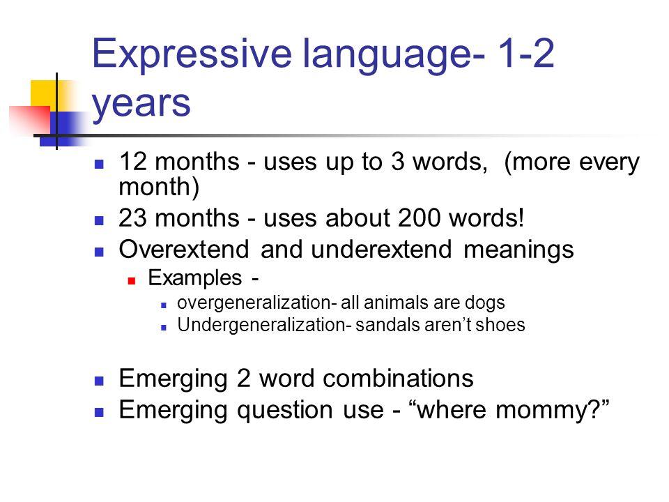 4 learner language interlanguage.