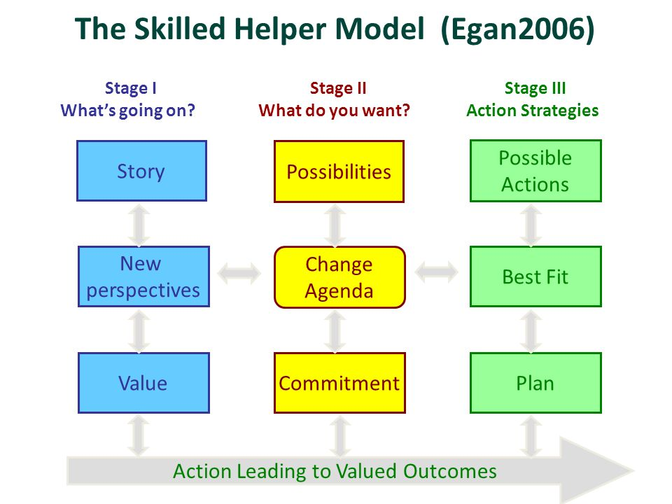 skilled helper model