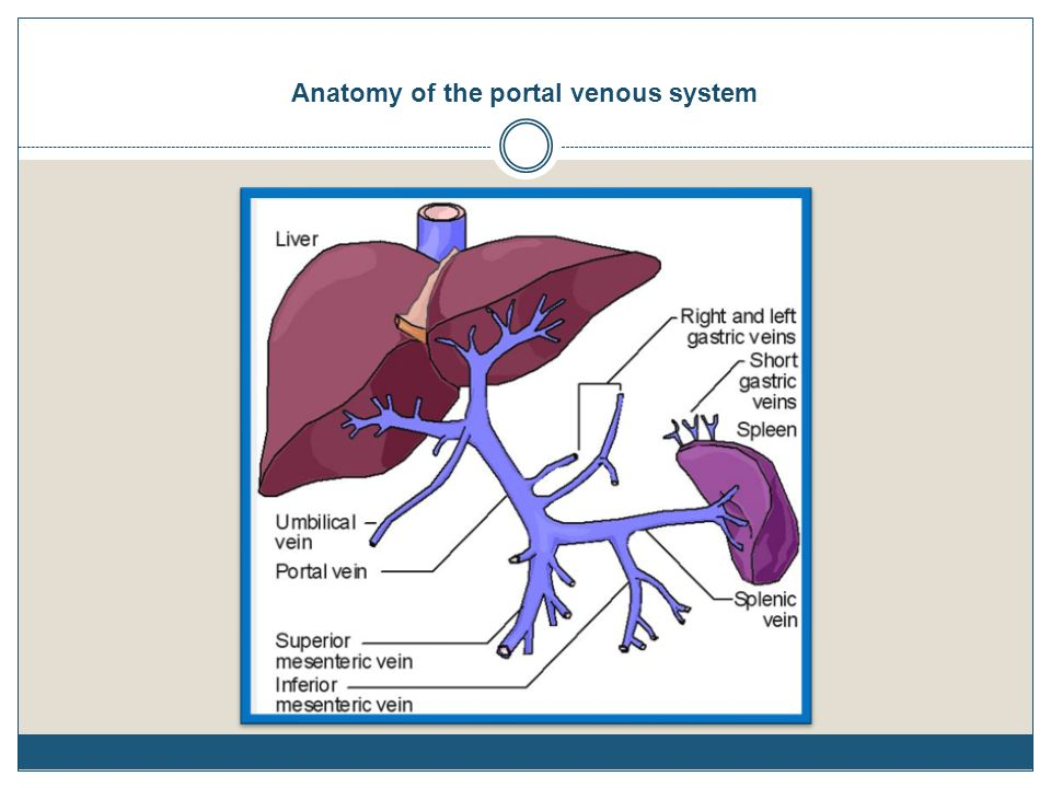 Portal hypertension Usually caused by increased resistance to portal ...