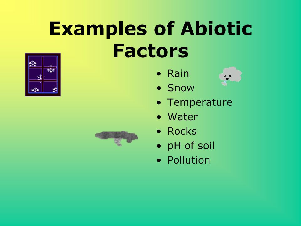 examples of abiotic factors gallery - resume cover letter examples