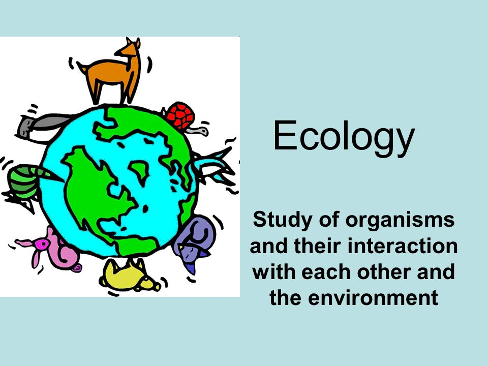 Ecology Study of organisms and their interaction with each other and the environment